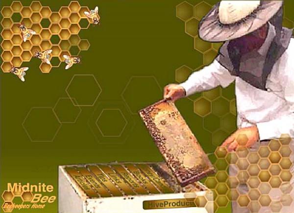 Открытки для пчеловода